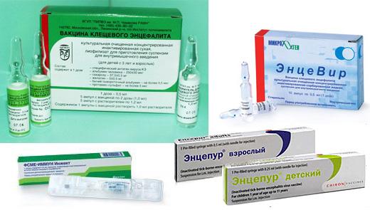 Вакцинация показана клинически